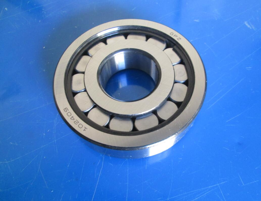 102409 Cylindrical roller bearings 45x120x29 mm,GPZ N2R409V