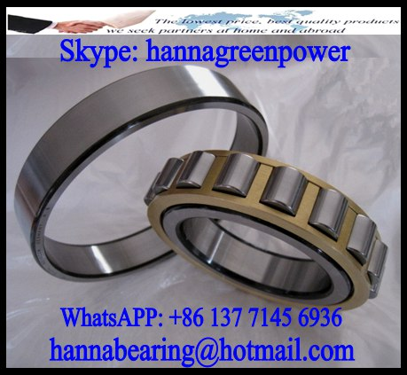 N1011 Single Row Cylindrical Roller Bearing 55*90*18mm