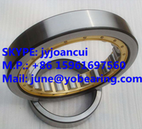 NUP 317 cylindrical roller bearing 85*180*41mm