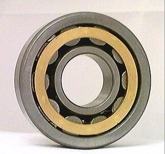 NJ209M Cylindrical Roller Bearing