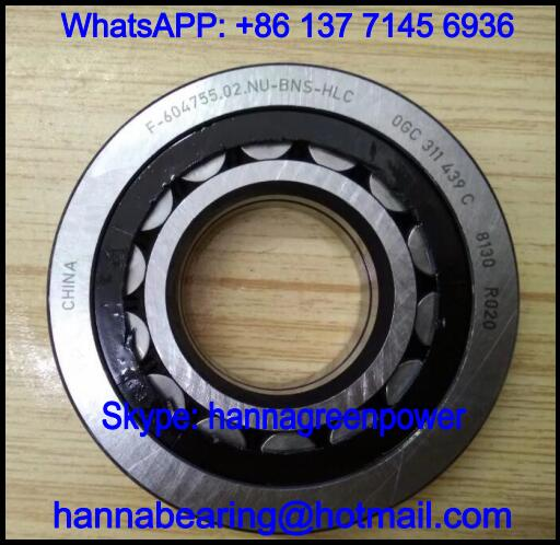 F-604755.02.NU-BNS-HLC Automobile Bearing / Cylindrical Roller Bearing