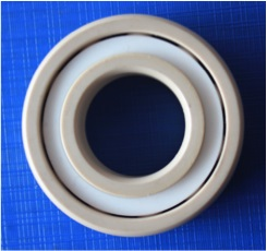 7300 Angular Contact Full Ceramic Bearing