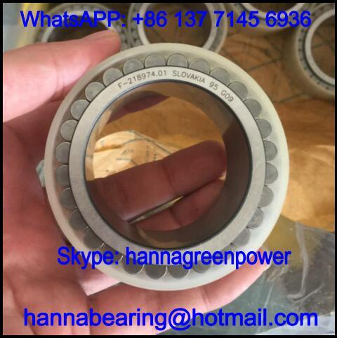 F-218974.01.RNN Double Row Cylindrical Roller Bearing