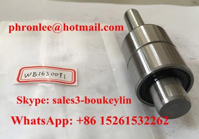 WB1630091-1 Auto Water Pump Bearing
