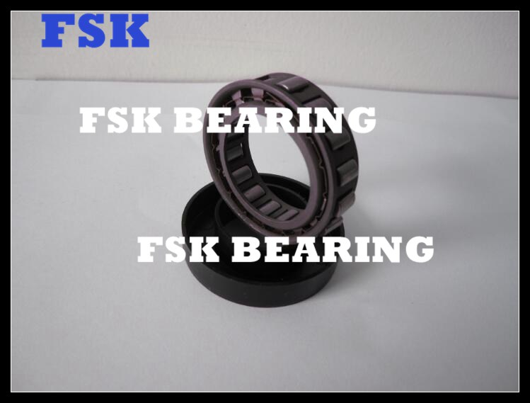 BWX 133339 Needle Roller Bearing ID 49.72mm OD 66.383mm