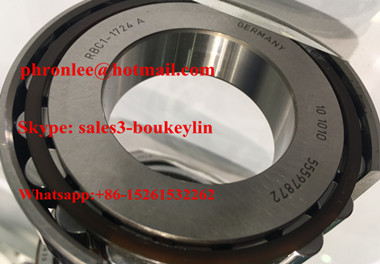 BC1-1724 Cylindrical Roller Bearing