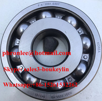 F-613091.6407 Deep Groove Ball Bearing