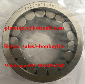 F-202972 Cylindrical Roller Bearing 24.8x39x17mm