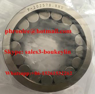 F-202972.RNU Cylindrical Roller Bearing 24.8x39x17mm
