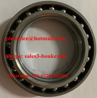 L0904-0835-66 Deep Groove Ball Bearing