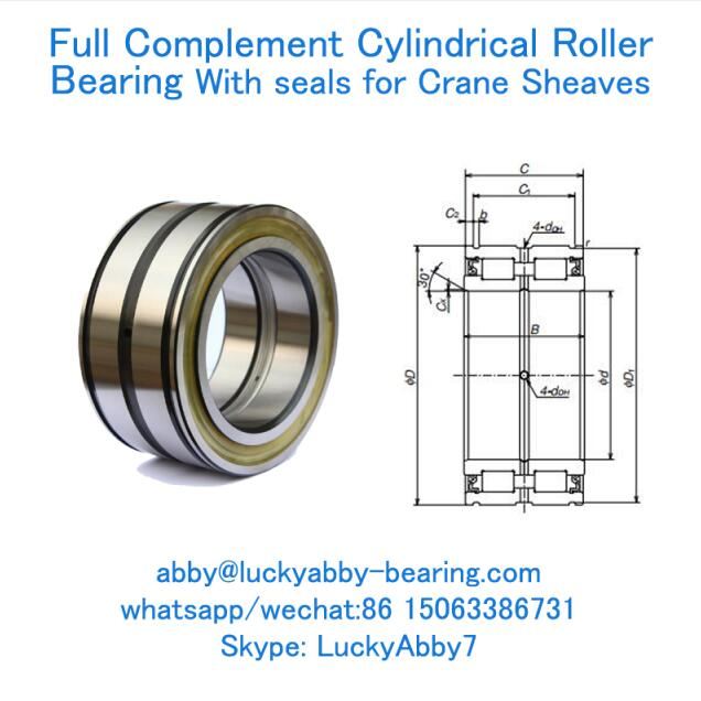 RS-5011DSE7NA Full Complement Cylindrical Roller Bearing With Seals 55mmX90mmX46mm