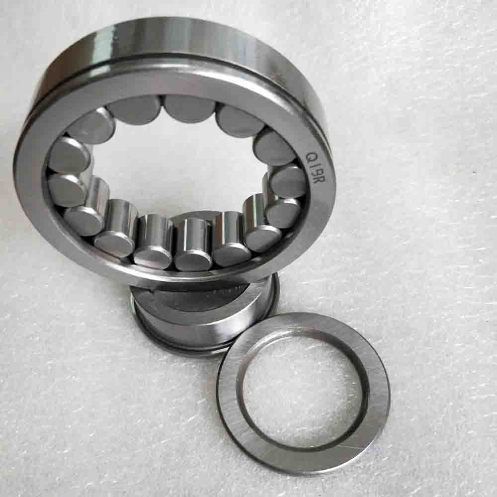SL04 5060PP Full Complement Cylindrical Roller Bearing 300X460X218mm