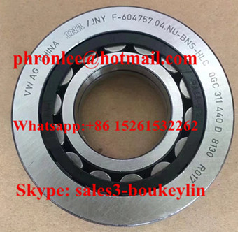 F-604757.04.NU-BNS Cylindrical Roller Bearing 31x72x18mm