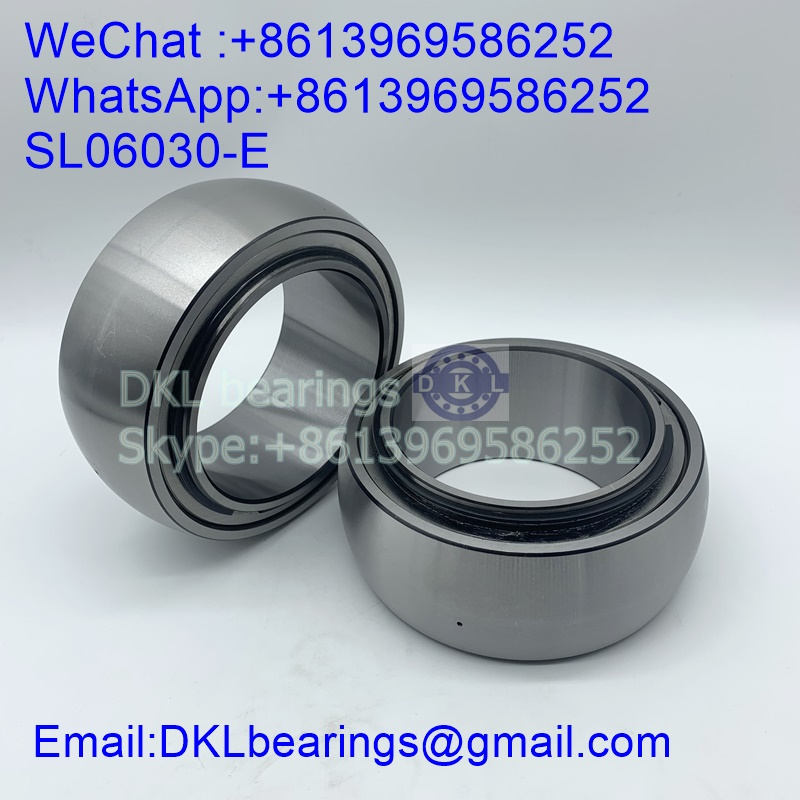 SL06030-E Cylindrical Roller Bearing (High quality) size 150x225x90 mm