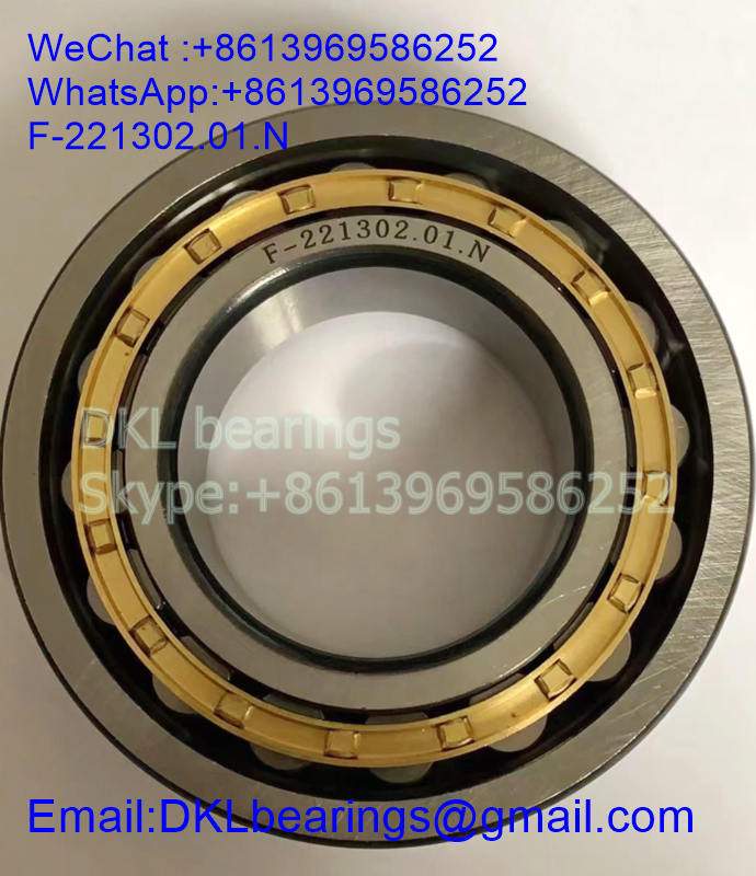 F-221302.01 Germany Cylindrical Roller Bearing (High quality) size 55*104*27 mm