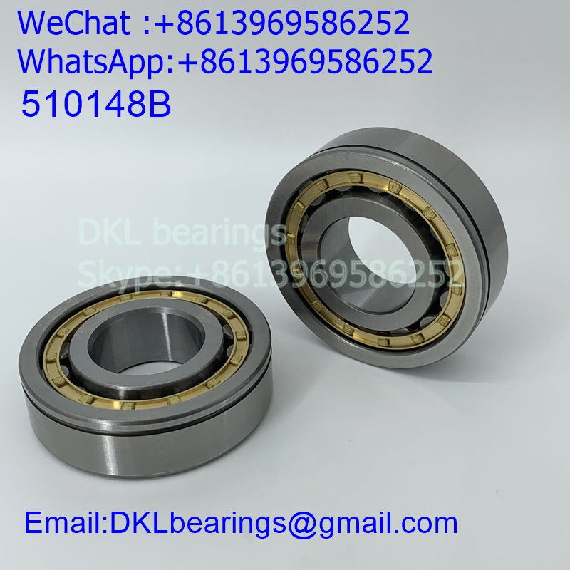 510148B Germany Cylindrical Roller Bearing (High quality) size 35*80*23 mm