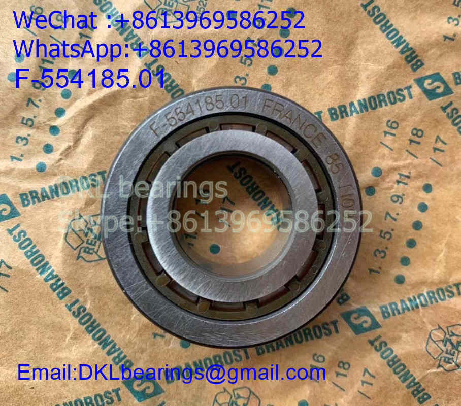 F-554185.01.NUP Germany Cylindrical Roller Bearing (High quality) size 17*37*14 mm