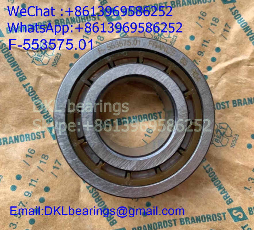 F-553575.01.NUP Germany Cylindrical Roller Bearing (High quality) size 20*42*16 mm