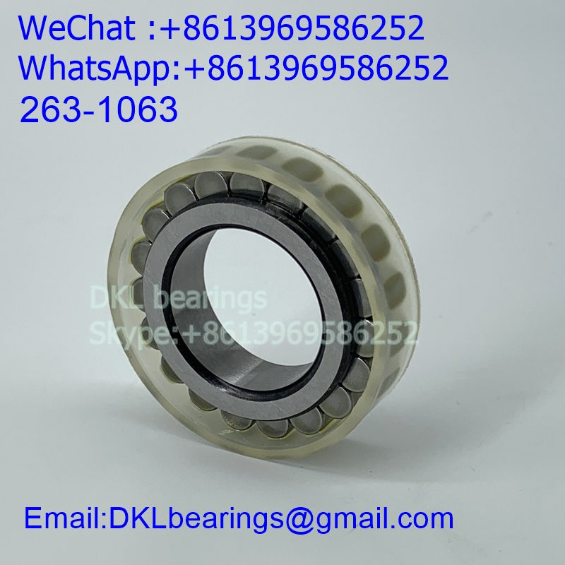 263-1063 Cylindrical Roller Bearing (High quality) size 25*42.51*12 mm
