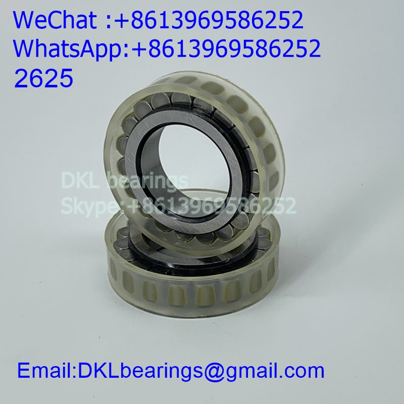 CPM2625 Italy Cylindrical Roller Bearing (High quality) size 25*42.51*12 mm