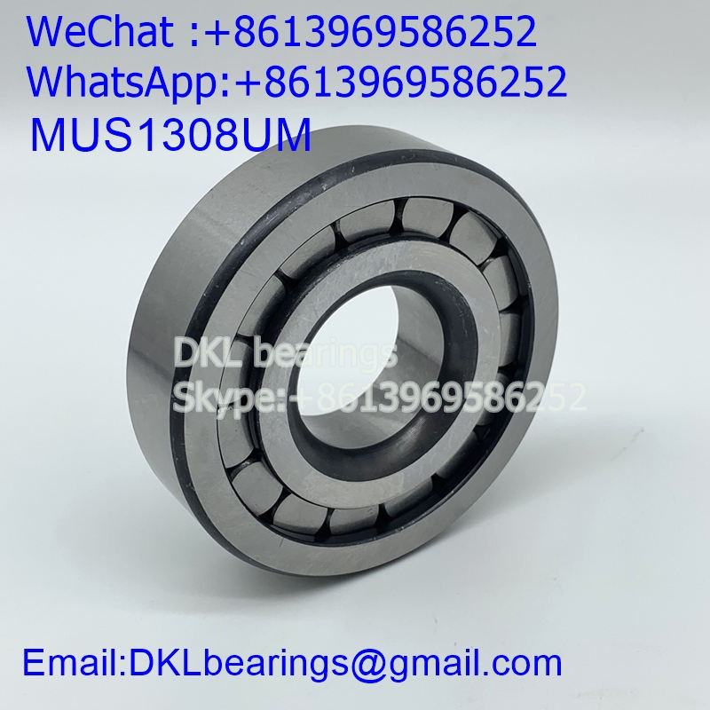 MUS1308UM Cylindrical Roller Bearing (High quality) size 35x90x23 mm