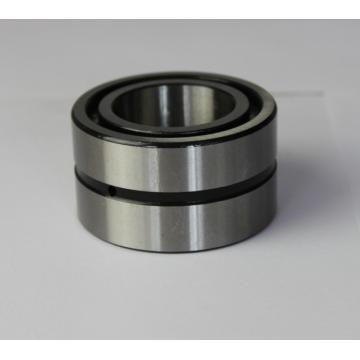 SL185004 full Complement Cylindrical Roller Bearings