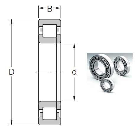NUP 214 ECML Cylindrical Roller Bearings 70*125*24mm