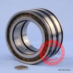 SL045008PP(NNF 5008 ADA-2LSV) bearing
