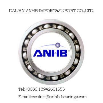 6000-2RS deep groove ball bearing