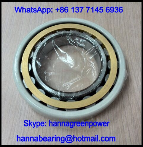 NU1020ECM/C3VL0241 Insocoat Roller Bearing / Insulated Bearing 100x150x24mm