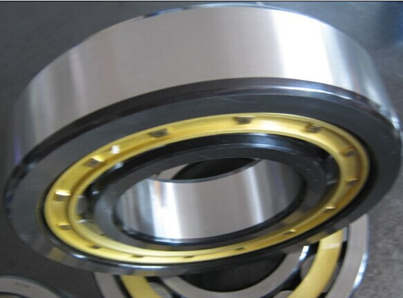 NU20/710ECMA Cylindrical Roller bearing 710*1030*185mm