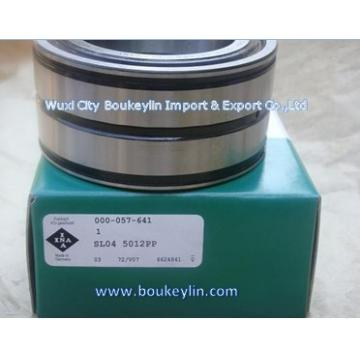 cylindrical roller bearings INA-SL04 5012 PP
