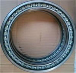 High quality BD155-4A walking bearing for excavator