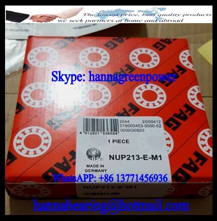 NUP213-E Cylindrical Roller Bearing 65x120x23mm