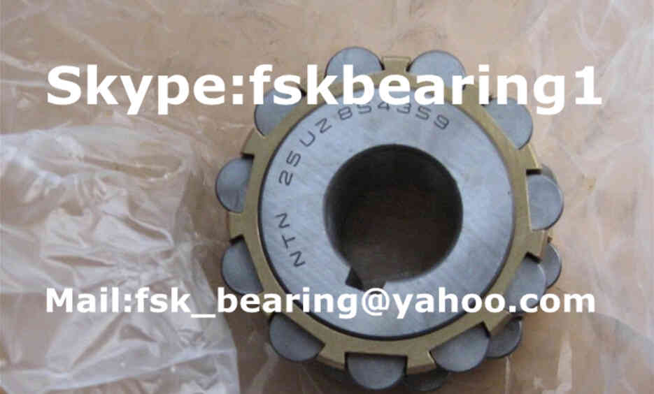 618YSX Eccentric Bearing