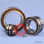SL04150 PP bearing