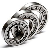 LSL192322 C3 Cylindrical Roller Bearing 110*240*80