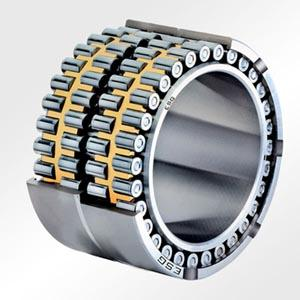 FC3040120 cylindrical roller bearing