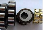 TRANS61443-59 Overall Eccentric Bearing used For Reduction Gears