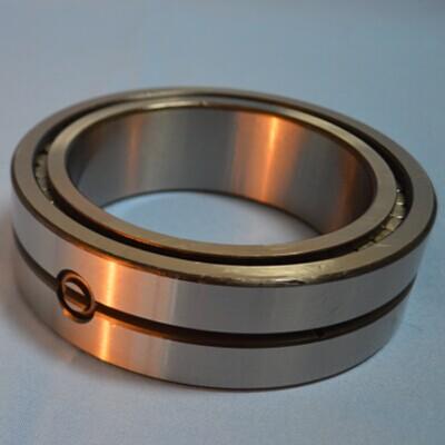 SL014916 Cylindrical roller bearings