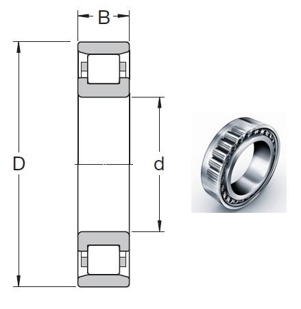 N 220 ECP Cylindrical Roller Bearings 100*180*34mm
