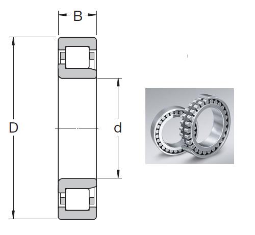 NJ 211 ECP Cylindrical Roller Bearings 55*100*21mm