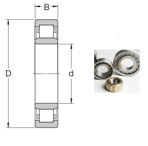 NU 1019 ML Cylindrical Roller Bearings 95*145*24mm