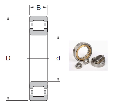 NUP 2211 ECML Cylindrical Roller Bearings 55*100*25mm