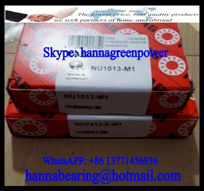NU1013-M1 Cylindrical Roller Bearing 65x100x18mm