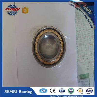NU213M bearing 65*120*23mm