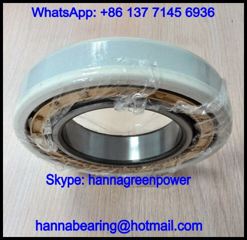 NU319-E-M1-F1-J20AA-C3 Current Insulating Cylindrical Roller Bearing 95x200x45mm