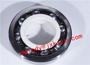 6024/C3J20C insulated bearing