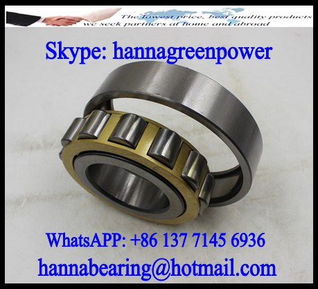 120RF30 Single Row Cylindrical Roller Bearing 120x180x46mm