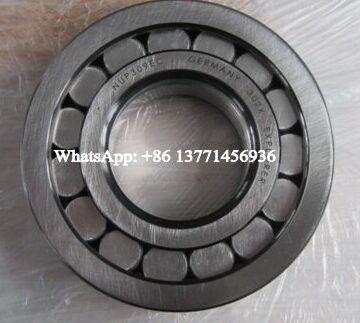 NUPK313-A-NXR*C3 Cylindrical Roller Bearing 65x140x33mm